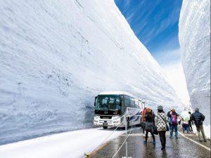 Cung đường tuyết 'mái nhà Nhật Bản'