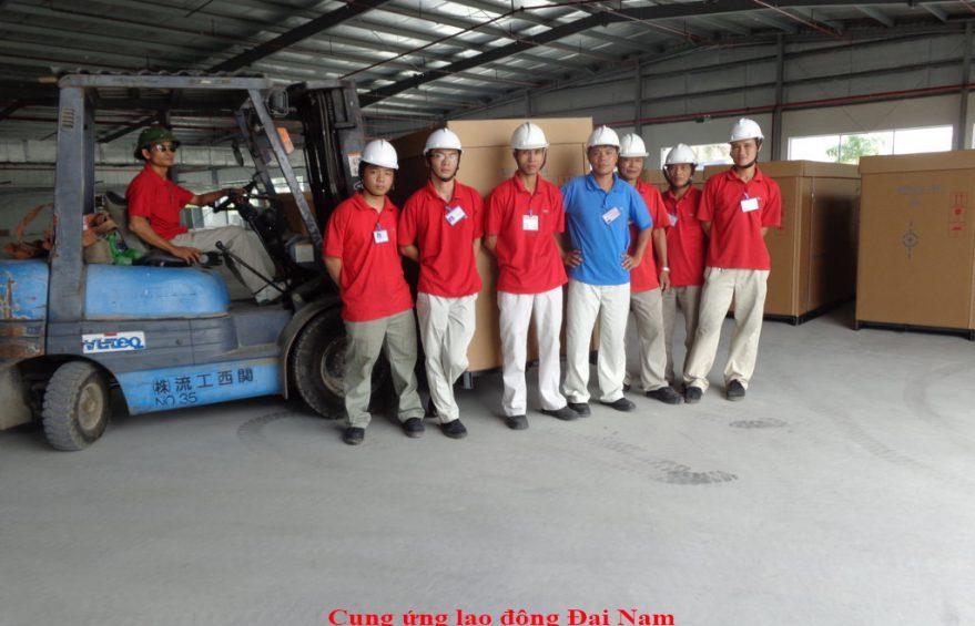 Dịch vụ bốc xếp hàng hóa tại Tphcm nhanh chóng nhất